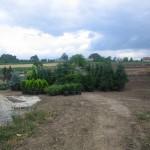 2 ogród Proszowice 009